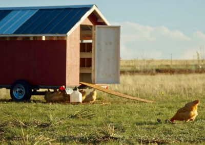 Rafter Ranch Eggmobile