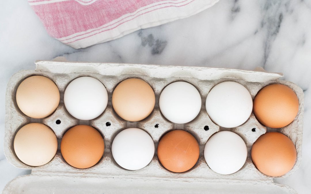 What Should I Ask When Buying Pastured Eggs? (+Bonus Tip)