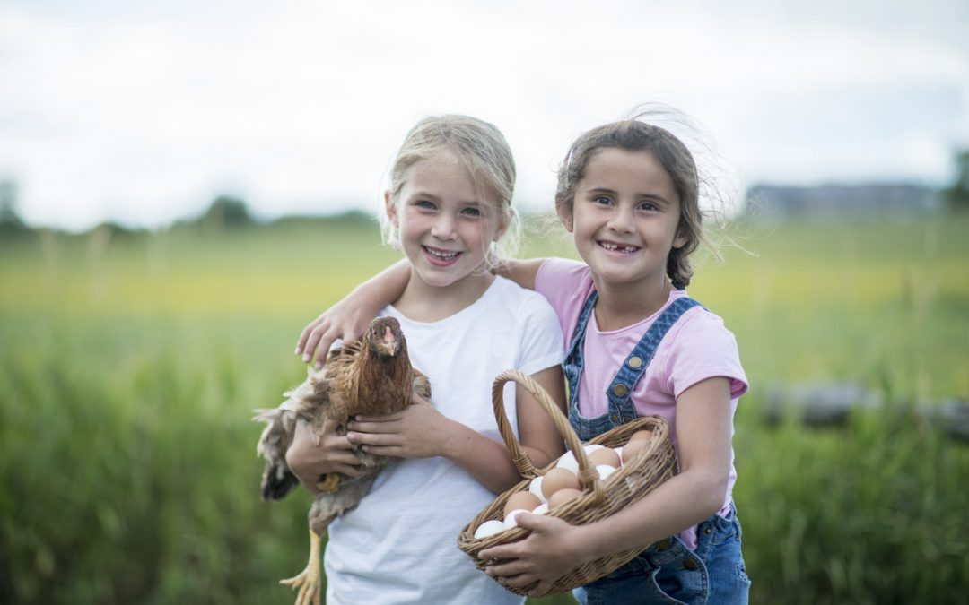 Two elementary age girls are standing together in a grassy field. They are holding a pasture raised chicken and a basket of pastured eggs at a local farm.