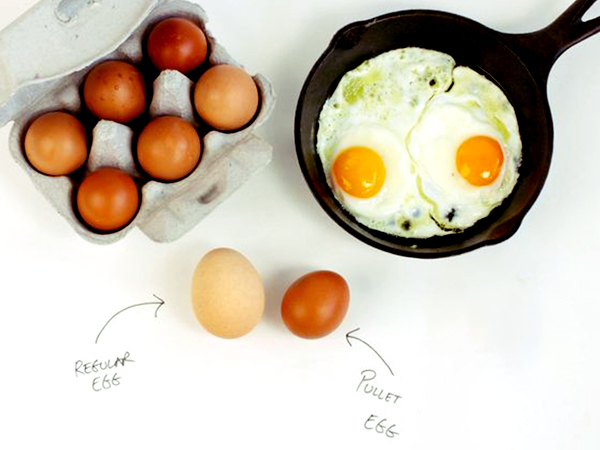Pullet Eggs: A Chef's Secret Weapon